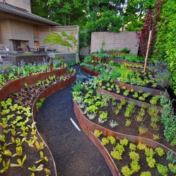 cor ten raised beds contemporary landscape seattle exteriorscapes llc raised vegetable gardensvegetable garden designraised