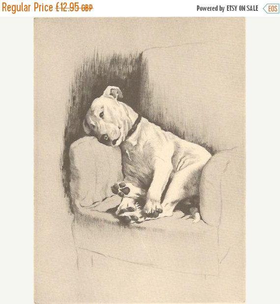 SALE CECIL ALDIN Print. The Bull Terrier. Vintage Print. Vintage Bookplate. Dog Print.