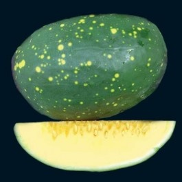 1000+ images about Melons, Cantaloupe & Watermelon seed Varieties on Pinterest | Slow food ...