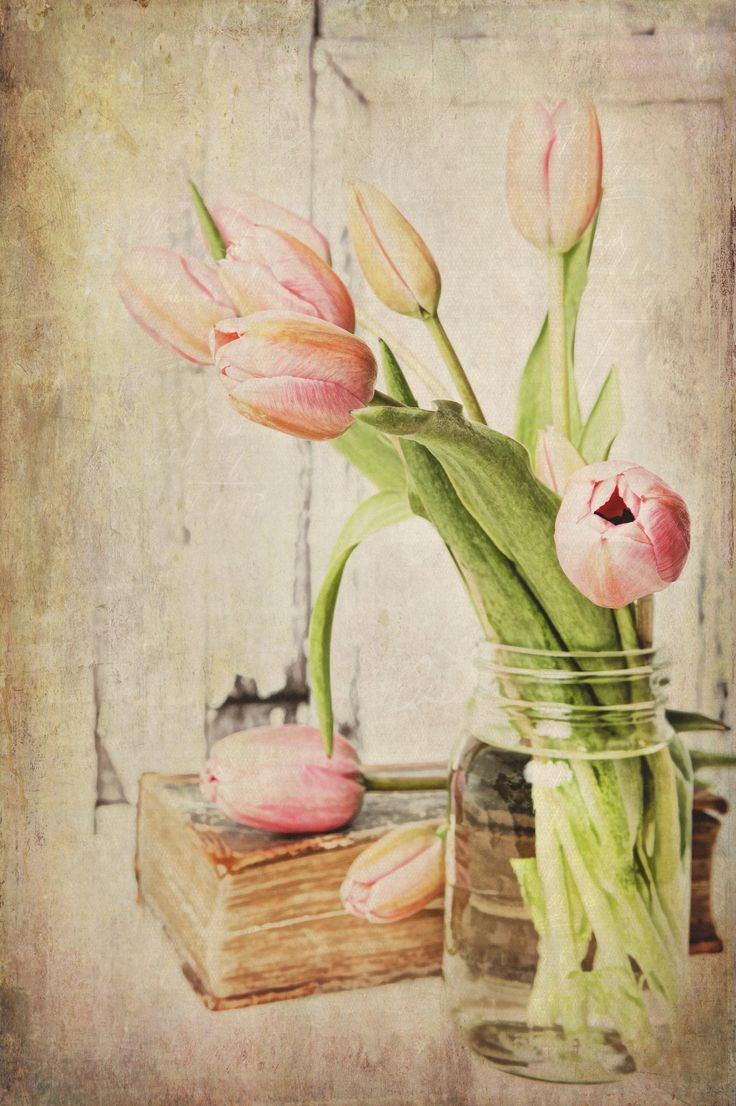 46 best photos tulips in vase images on pinterest tulips tulips vintage pink tulips by brenda carson on 500px reviewsmspy