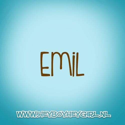 Emil (Voor meer inspiratie, en unieke geboortekaartjes kijk op www.heyboyheygirl.nl)