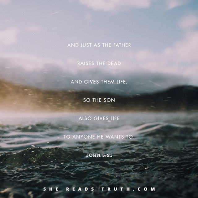 "Day 5 of the Bible-reading plan ""John: Come and See"" from She Reads Truth. ~  Lord of the Sabbath ~ Today's Text: John 5:1-47, Exodus 20:8-11, Luke 6:5, 1 Thessalonians 4:13-18 [...]"