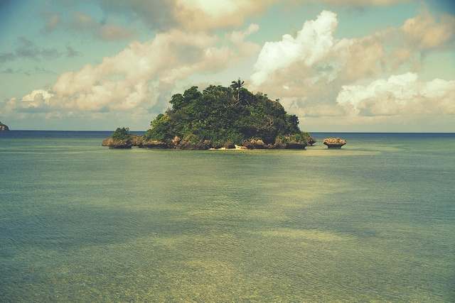 Iriomote island by yuu@photography, via Flickr  #beach #japan #music #ocean #okinawa #photography #pretty #scenery #sea #seashore #sun: Camera Canon, Beach Japan, Flickr Beach, Eos Festival, Amazing Beach, Festival Fun, Beach Beautiful