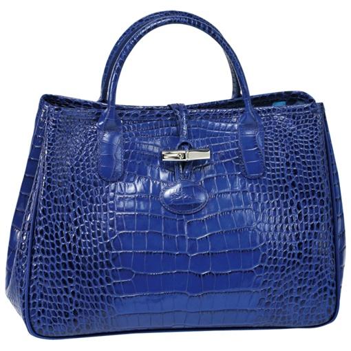 Sac Longchamp Roseau Fushia : Best images about sac longchamp on