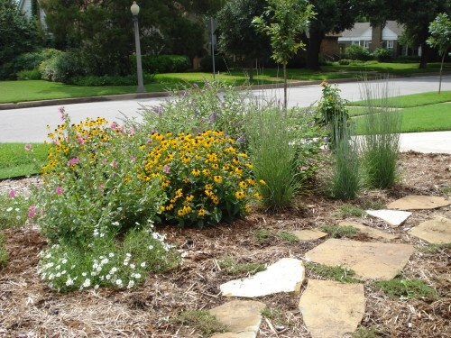 65 Best Xeriscape Garden Images On Pinterest