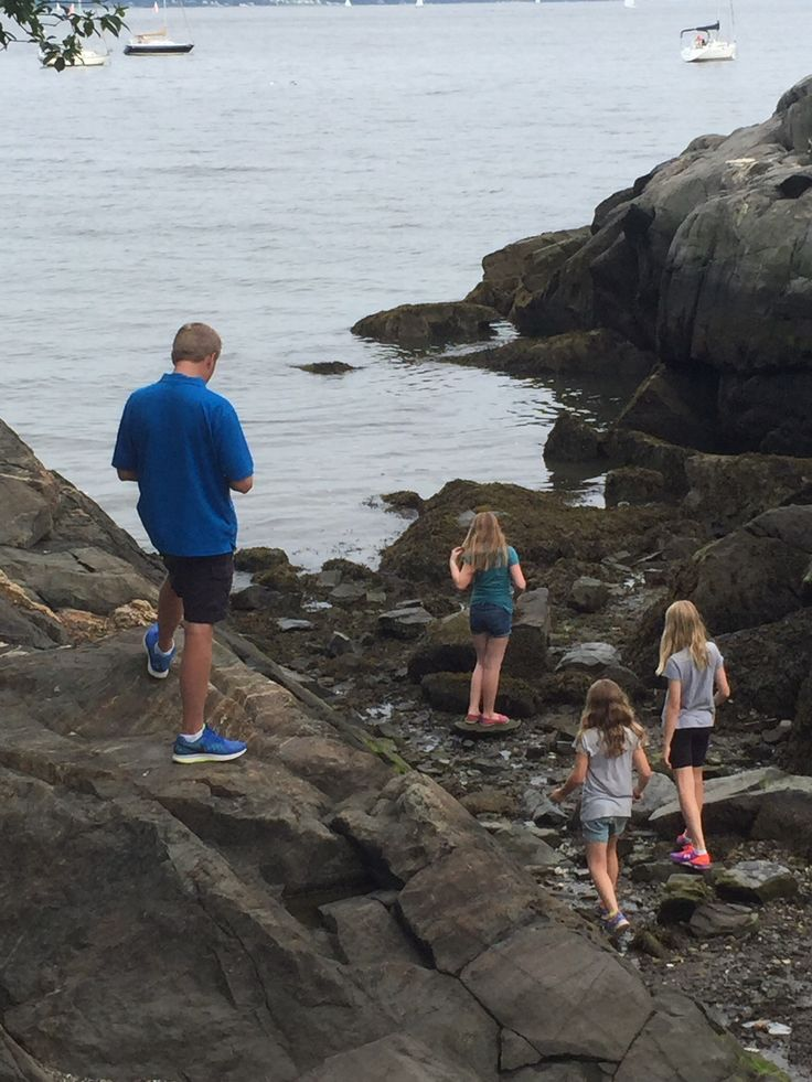 We climbed rocks and looked in tide pools by the ocean