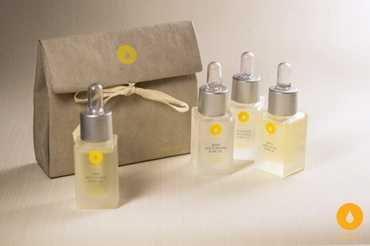 A luxurious travel kit containing our four pure natural oils for only $126