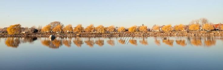Réflexion d'automne