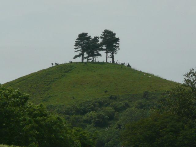 Colmers Hill overlooking Symondsbury: Overlook Symondsburi, Hill Overlook, Colmer Hill