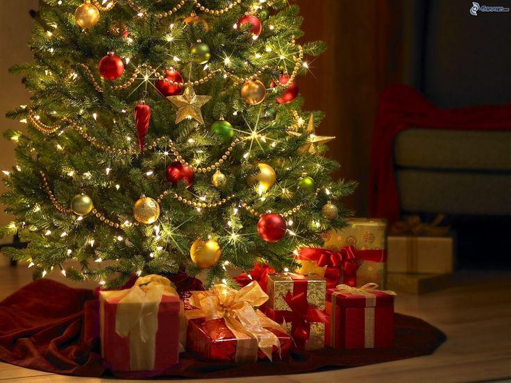 Oggi ci dedichiamo alla decorazione del tradizionale albero di Natale. Accendete le luci, riunite la famiglia, chiamate anche i vicini! Natale è arrivato...