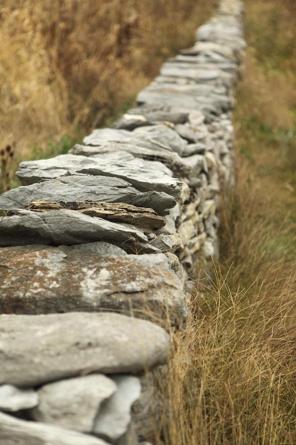 Stone wall on a farm near Antietam battle field.