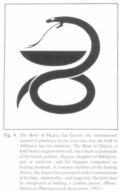 Hygeia International Essay Sample