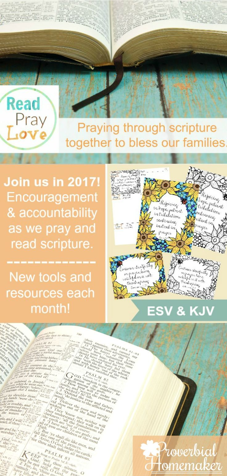 I NEED THIS!  Read, Pray, Love includes gorgeous scripture art prints and memory verse cards with COLORING PAGES! Plus a 5-Day Challenge! via @TaunaM