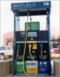 Nevada retailer takes ethanol story to the Hill biofuelschat