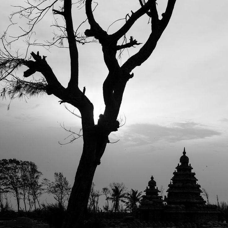 https://flic.kr/p/w1mQYC | Shore Temple, Mahabalipuram, 2013 | www.maheshb.com