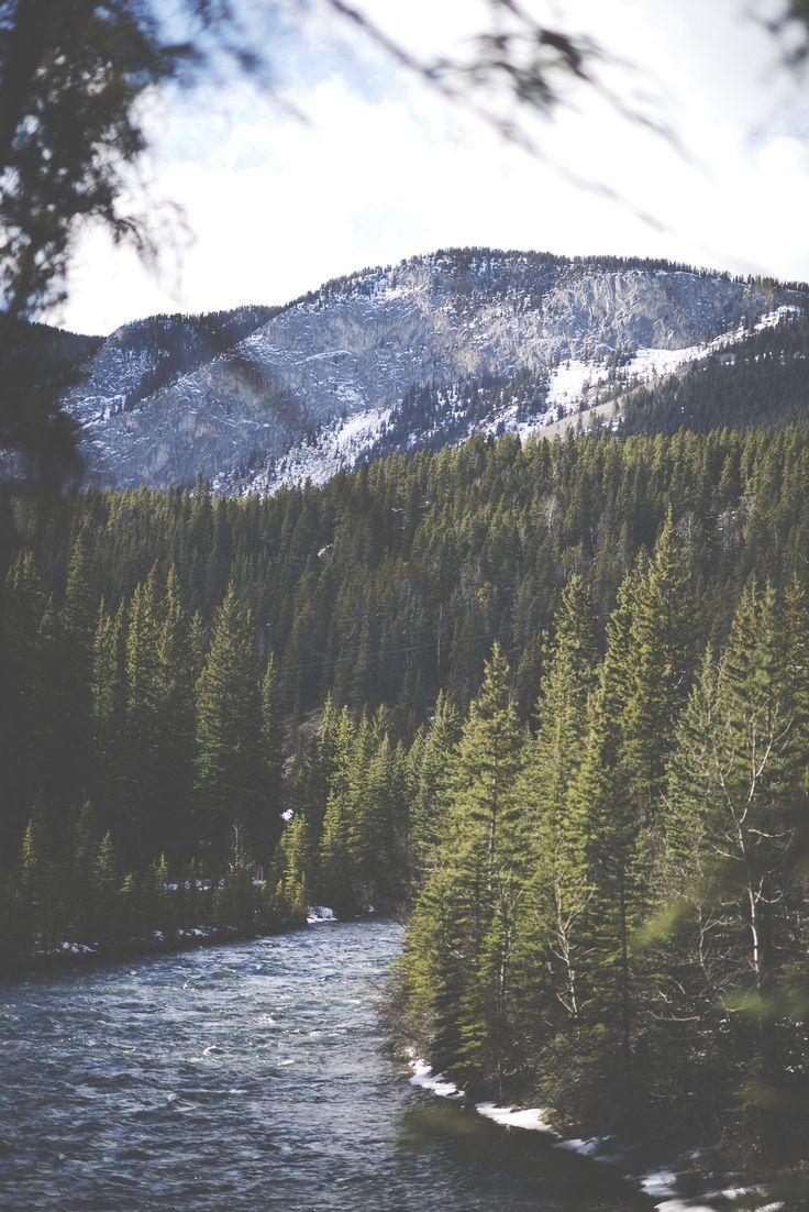 beautiful trees, mountain, river