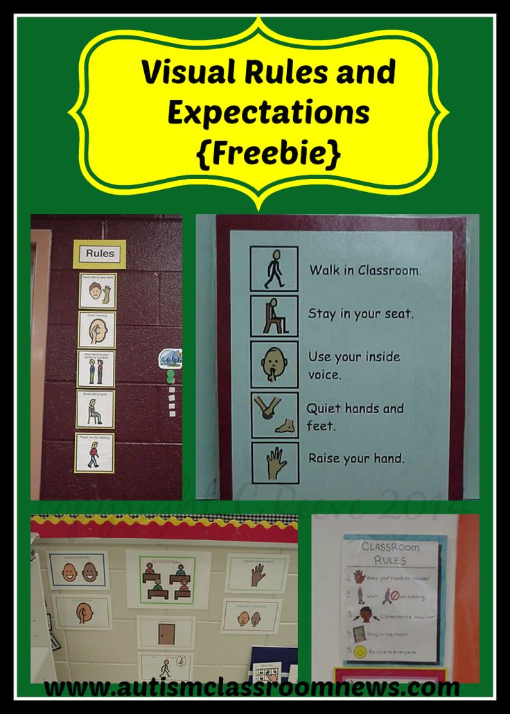 Autism Classroom News: Visual Rules and Expectations (FREEBIE!)