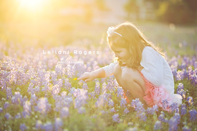 Gorgeous-- I need to find some blue bonnets! {photography with lei} capturing sun flare - Simply Kierste