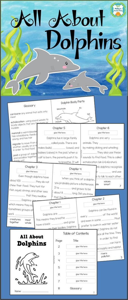 Dolphins informational text activity book - Skills practice in identifying main idea, using context clues, text features, and vocabulary - Grades 2-3