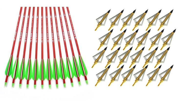 Top 5 Best Cheap Compound Bows Reviews 2016  Best Hunting Bow