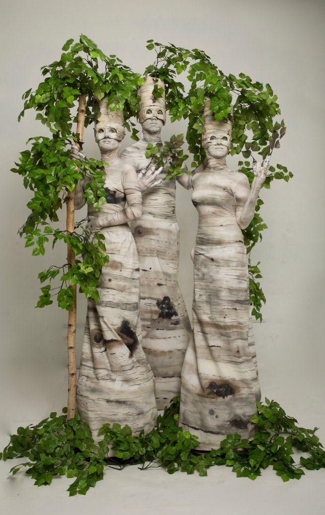 Surprise your guests with birch trees that are act…