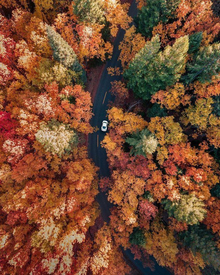 Absolutely breathtaking. #Nature #Autumn #Fall #Fa…