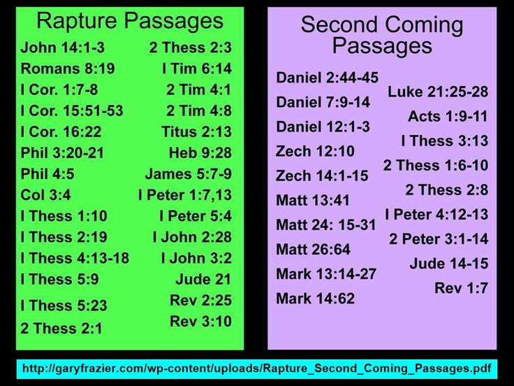 Two DIFFERENT Events, Rapture & Second Coming. I do believe there is a difference between persection and the tribulation period of the end times. rev.3.10, 1 thess. 1.10, 1 thess5.9. the church is not mentioned between revelations 6 thru18. 19 is when we return with Christ