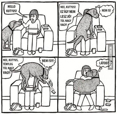 Túl nagy vagy, kutyus!