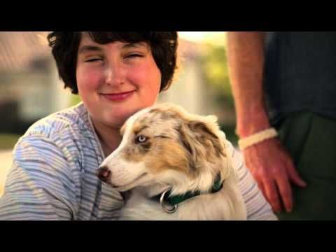 Home Alone meets The Dog Whisperer in a Comedy for the Whole family, The Bandit Hound, Stealing Your Heart April 12, 2016 Alchemy distribution is set to rele...