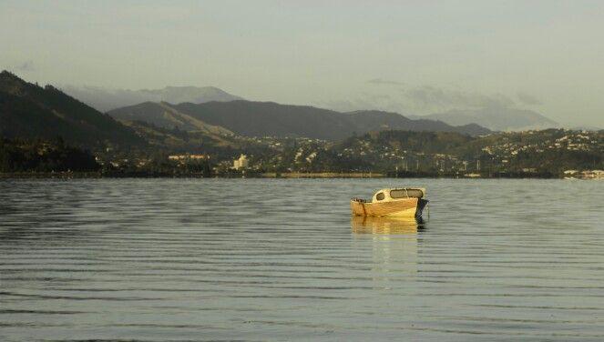 Nelson Bays, Morning