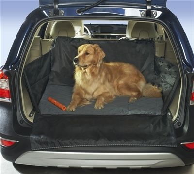 14 best Wag 'n Ride Car Accessories for 4-Pawed Passengers images ...