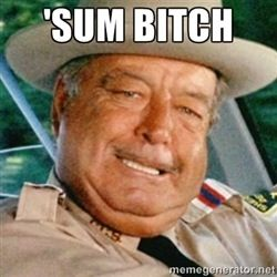 Sheriff Buford T Justice-Smokey and the Bandit