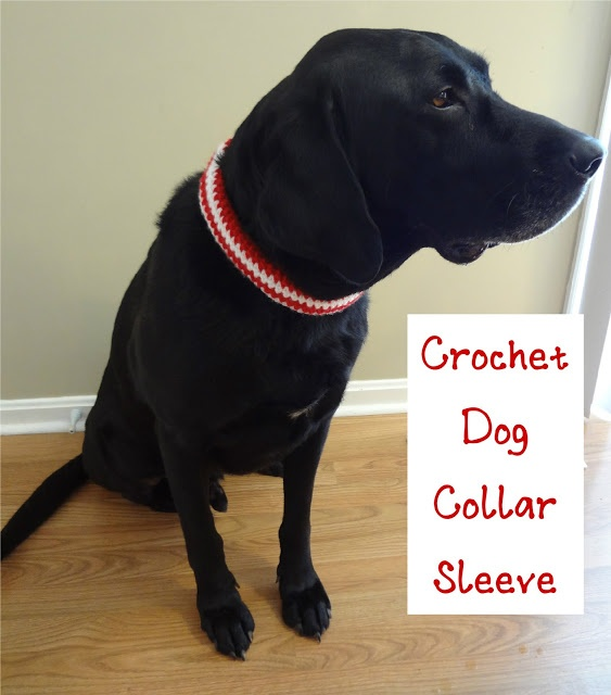 17 Best images about Crocheted Dog Clothes on Pinterest ...