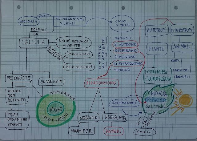 Unconventional Mom: Mind Map : gli esseri viventi e cellula (prima med...