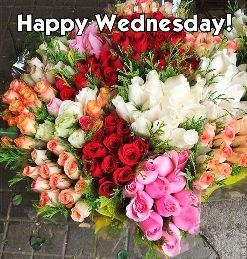 Happy Wednesday Greeting Card, Ecard | Free Greeting Card ...