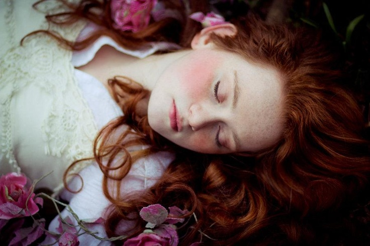 Sleeping Beauty Flowers Pale Ginger Sleeping Beauty