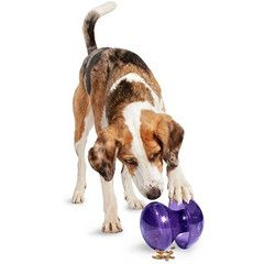 Busy Buddy Magic Mushroom dog treat dispenser. Just fill the Magic Mushroom dog toy with treats, adjust the size of the window that the treats fall out of and let your dog try his/her darndest to try and get those treats out. www.ActiveDogToys.com