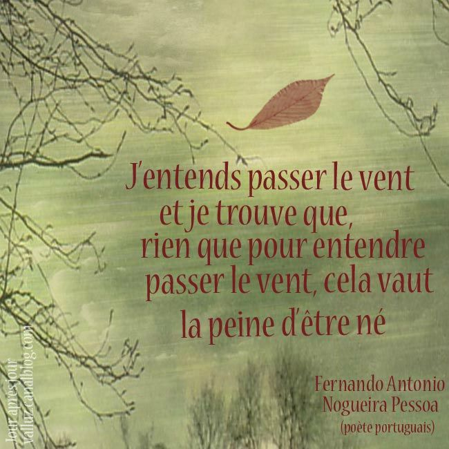 S 'accrocher aux branches ...