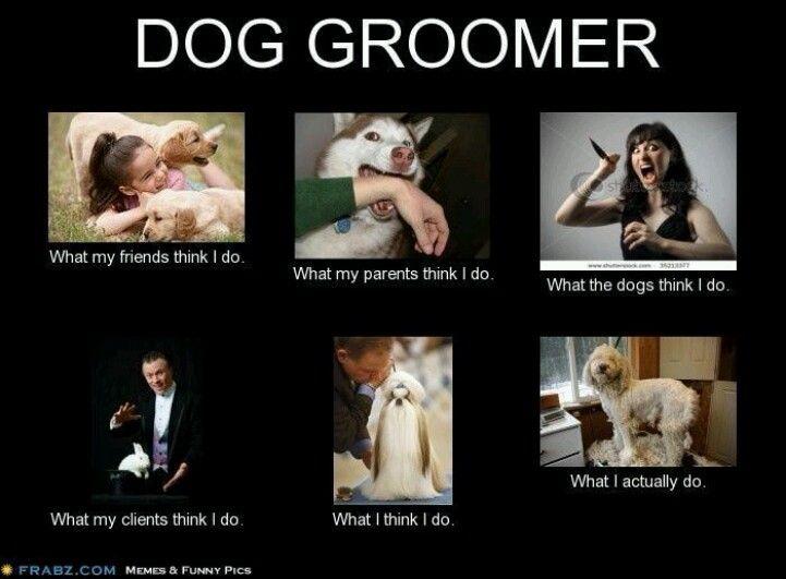 -Repinned- More groomer humor.