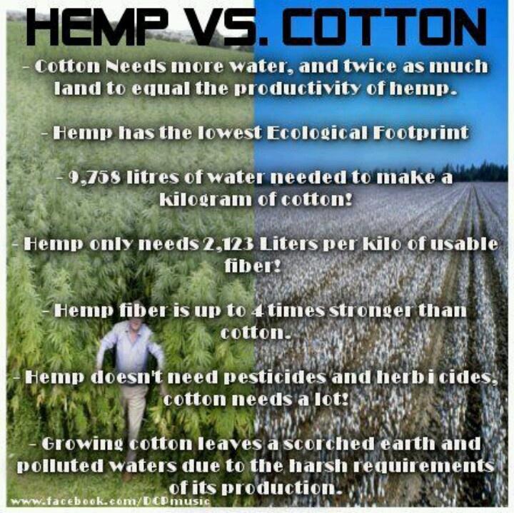 A Moral Marijuana Conundrum?