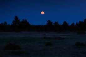 Night over the Alvar