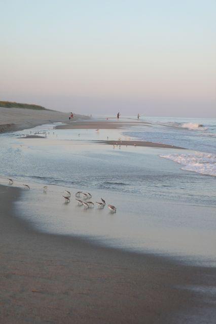 Hamptons Beaches | Vestiaire Collective Summer Weekends