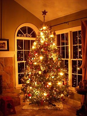 how to put lights on a tree: go up and down instead of around and around.