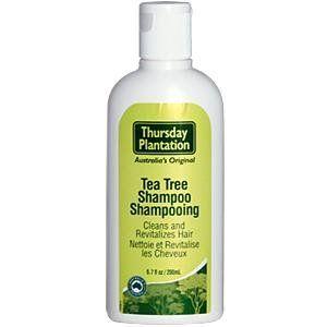 Tea Tree Shampoo - 200 ml - Liquid