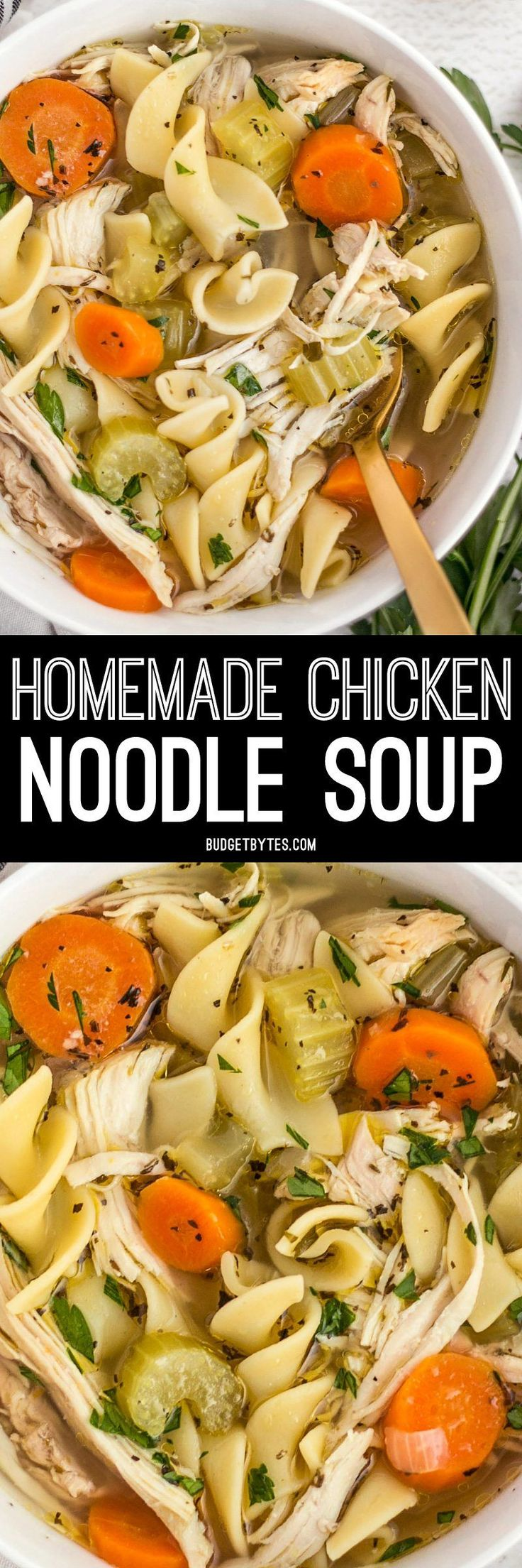 The chunky vegetables and tender egg noodles in this savory Homemade Chicken Noodle Soup will fill your belly and soothe your soul. BudgetBytes.com