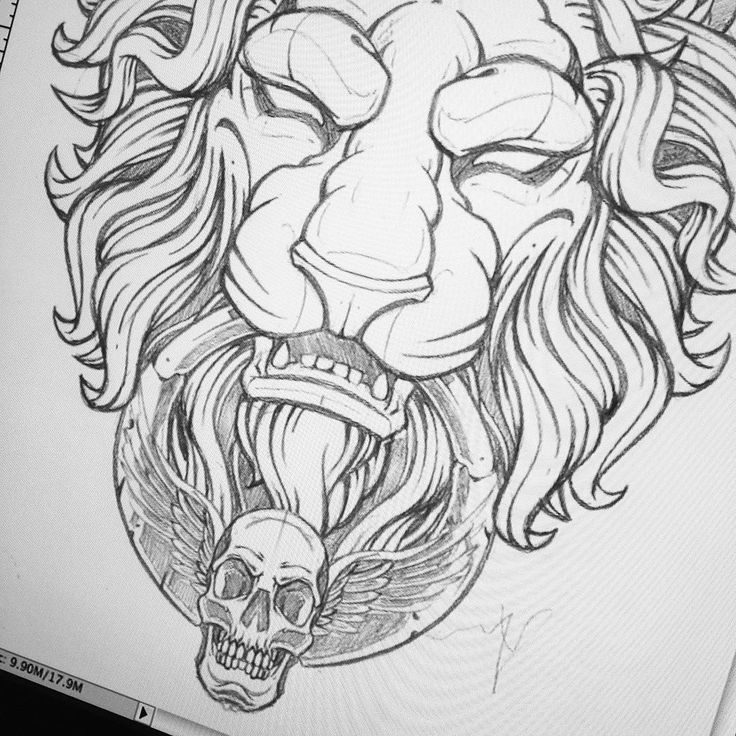 9 Best Lion Images On Pinterest Tattoo Designs Tattoo