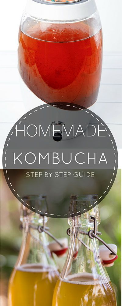 DIY- Make Your Own Kombucha - Step by step instructions!  #Kombucha #probiotic #fermenting  via @thermokitchen