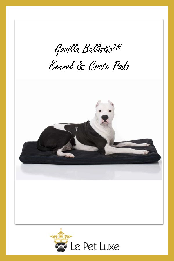 Pin On Le Pet Luxe Luxury Dog Beds