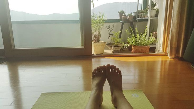 Good morning. 더운 아침이야.  #아침 #morning #요가 #yoga