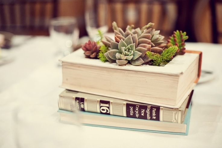 Turn a Book into a Succulent Planter   - Darby Smart